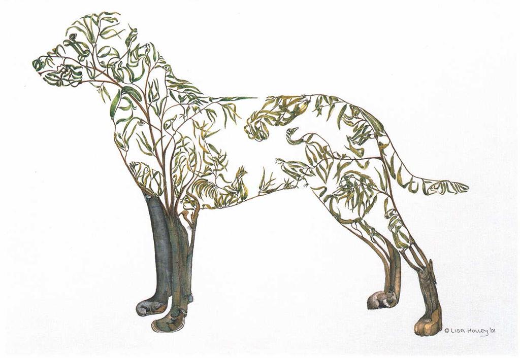 Labrador-Re-TREE-ver