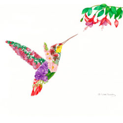 Hummingbird's Delight II